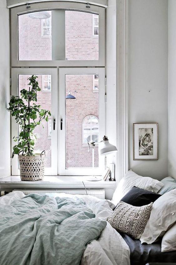 indoor plant cosy bedroom